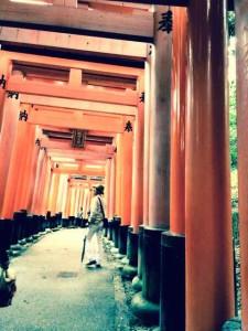 京都伏見稲荷神社回廊